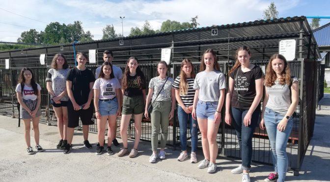 Uczniowie Szkolnego Koła Wolontariatu z wizytą w schronisku